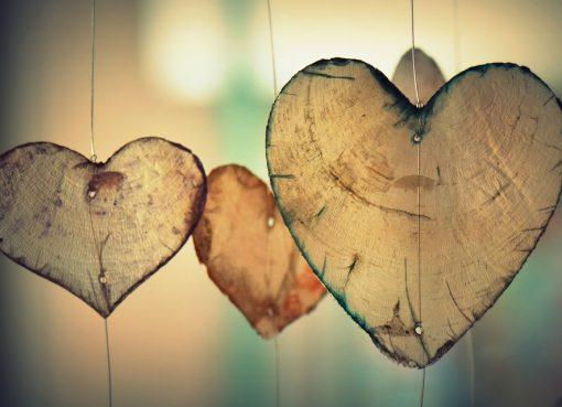 serca z drewna